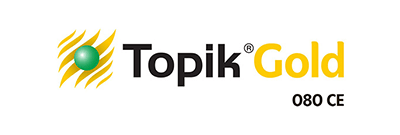 TOPIK GOLD